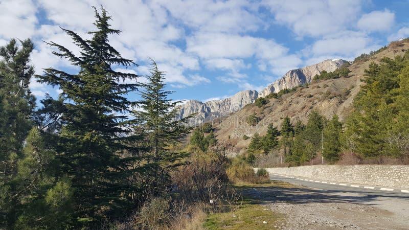 El camino beetwen las montañas y el bosque imagenes de archivo