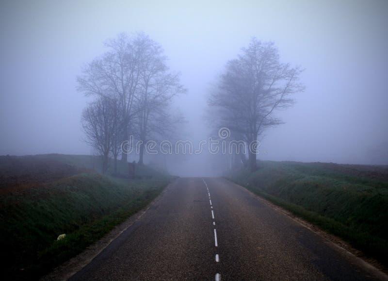 El camino brumoso (2) foto de archivo libre de regalías
