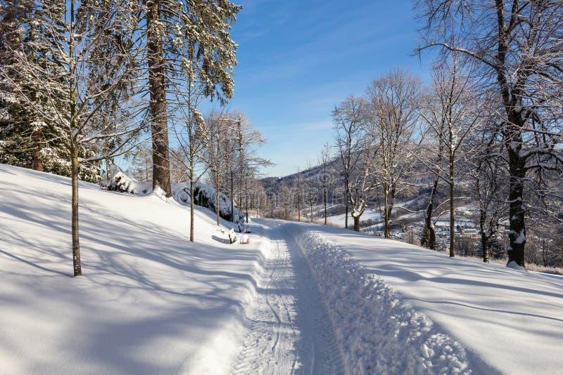 El camino del invierno estira en la distancia y el bosque nevado foto de archivo libre de regalías
