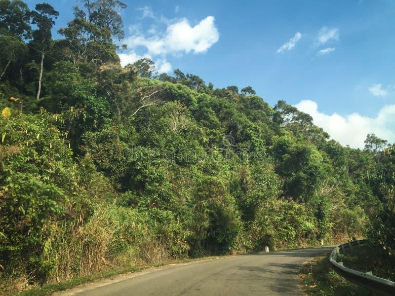 El camino en el parque nacional de Puluong en Haifong, Vietnam foto de archivo