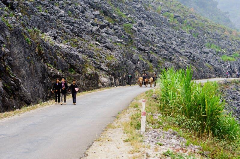 El camino en la piedra-meseta de Dong Van, Viet Nam imágenes de archivo libres de regalías