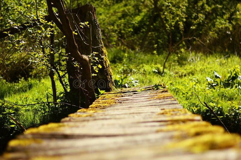 El camino a en ninguna parte fotografía de archivo