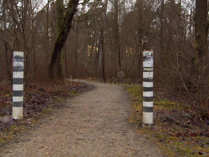 El camino en el otoño, en nieve de algunos lugares es ya visible foto de archivo