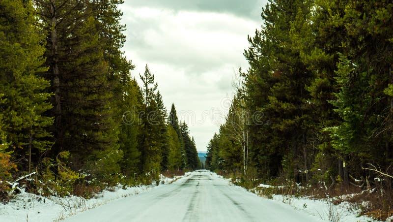 El camino es helado y peligroso fotos de archivo