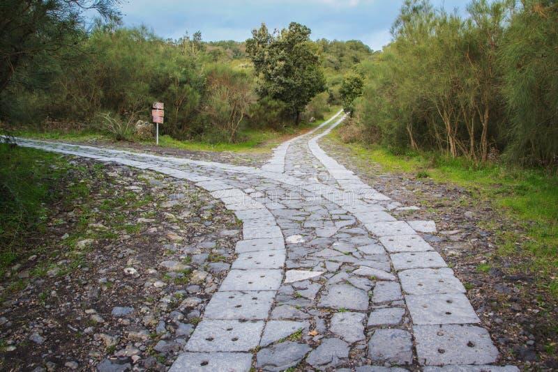 El camino lleva a una bifurcación ¿Cuál usted elige? foto de archivo libre de regalías