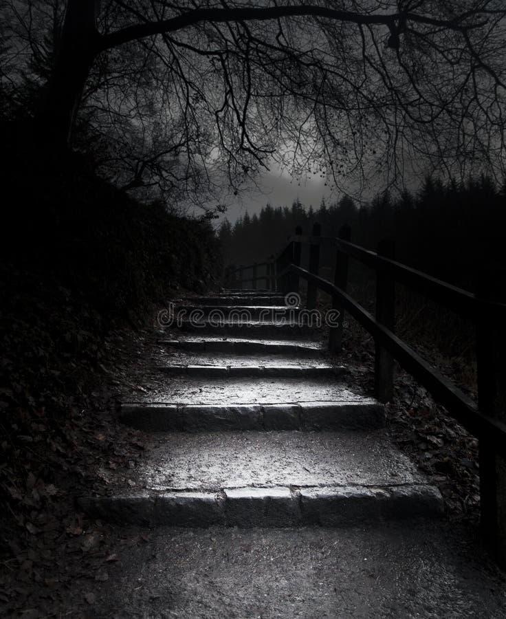 El camino oscuro fotografía de archivo libre de regalías