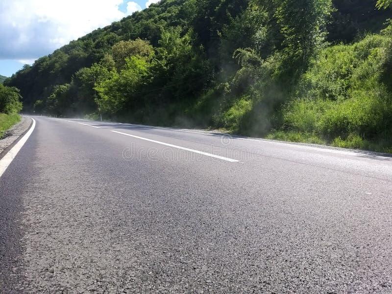 El camino pavimentó y marcó a través de un bosque con poca niebla fotos de archivo