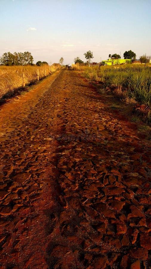 el camino rojo foto de archivo