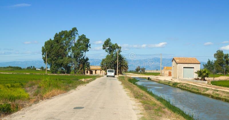 El camino a través del arroz coloca en el delta del Ebro foto de archivo libre de regalías