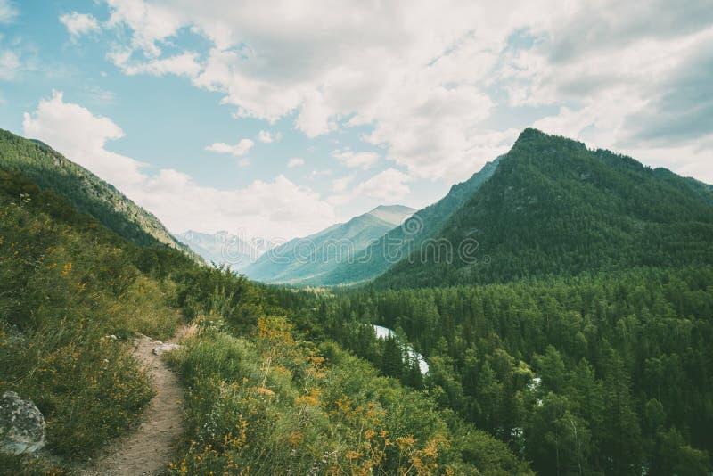 El camino a través del prado a las montañas a las montañas de Altai foto de archivo