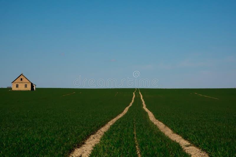 El camino a una casa sola en el medio de un campo verde imagenes de archivo