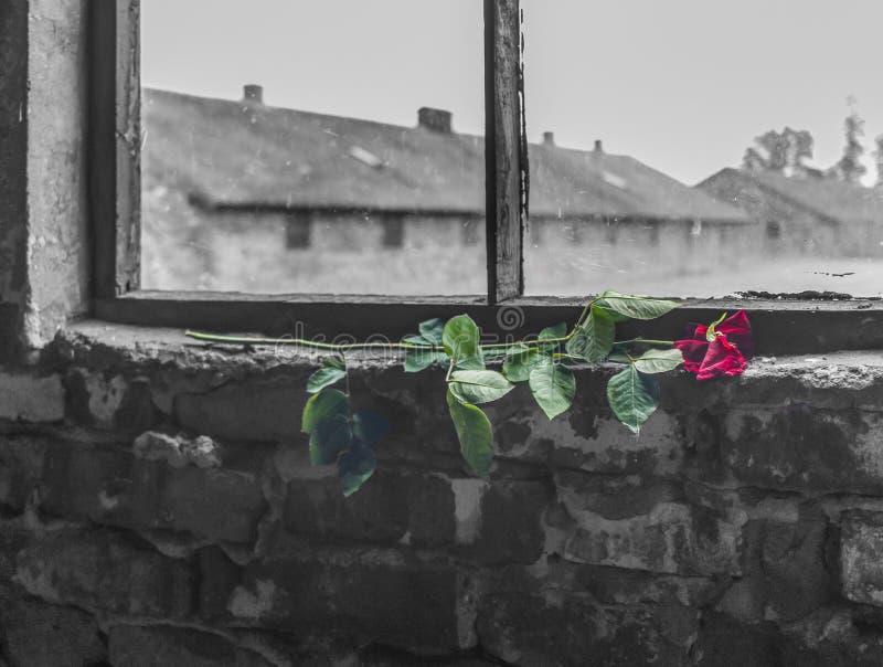 El campo de la exterminación de Auschwitz, Polonia fotos de archivo libres de regalías