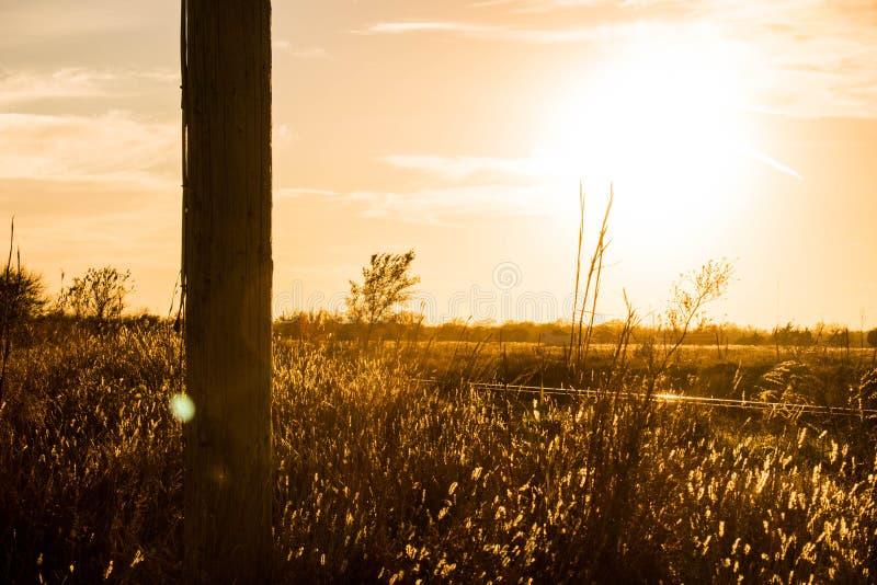 El campo de la puesta del sol imagen de archivo libre de regalías