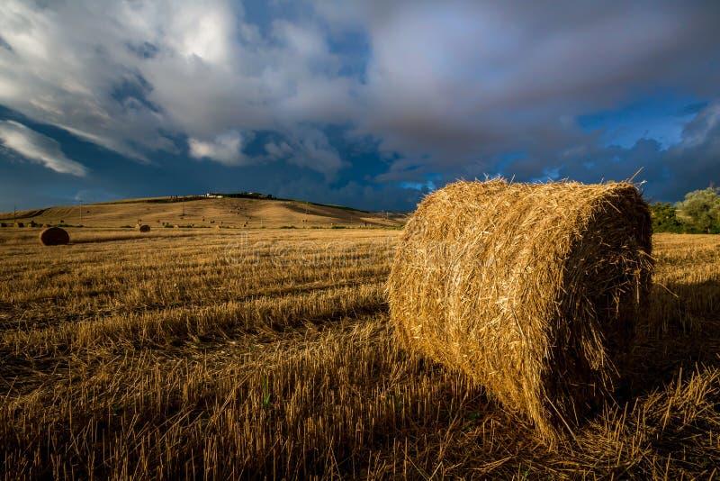 El campo del punto de las balas de heno en Toscana antes de la tormenta golpea foto de archivo