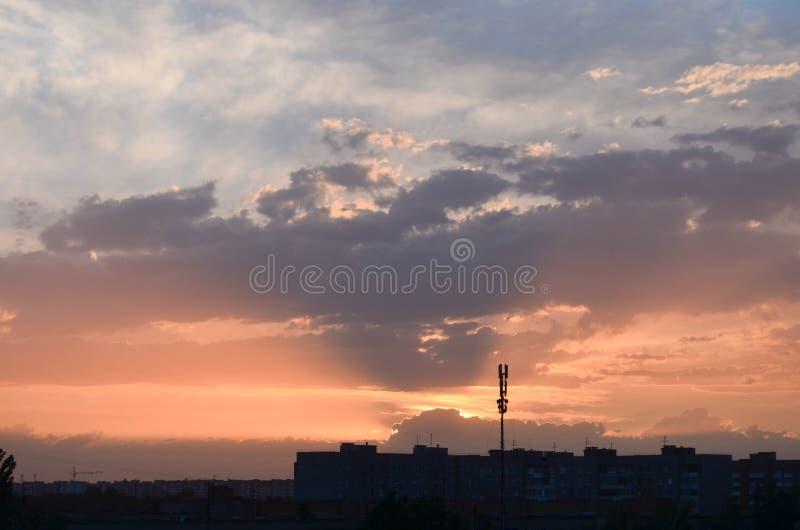 El campo en el amanecer fotografía de archivo libre de regalías
