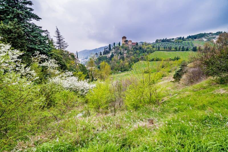 El campo verde alrededor de la fortaleza fotos de archivo libres de regalías