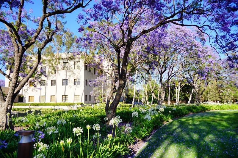El campus de Caltech fotos de archivo libres de regalías