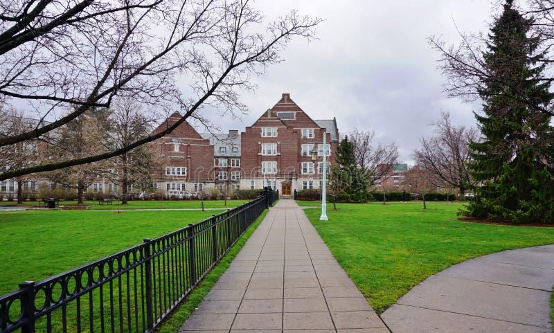 El campus de la universidad de estado de Michigan imagen de archivo libre de regalías