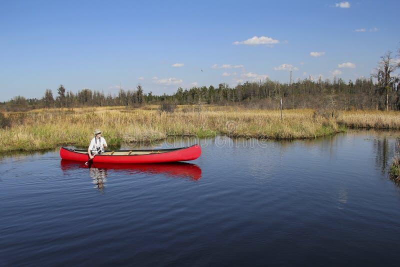 El Canoeing en el pantano de Okefenokee - Georgia imagen de archivo libre de regalías