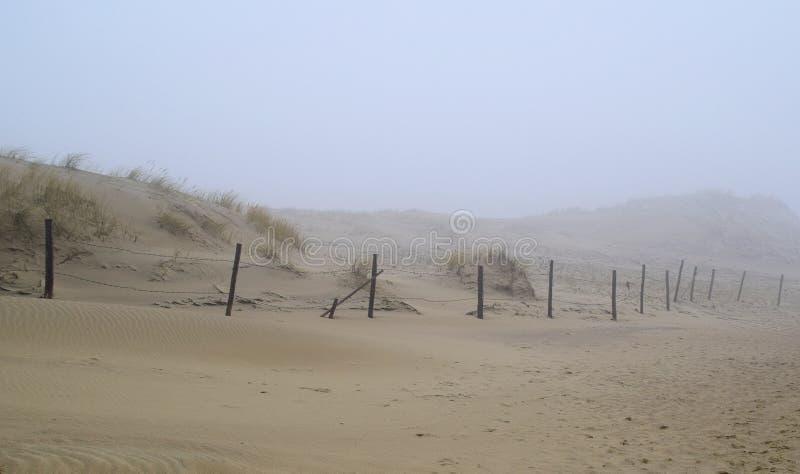 El canto curonio en la niebla imagen de archivo