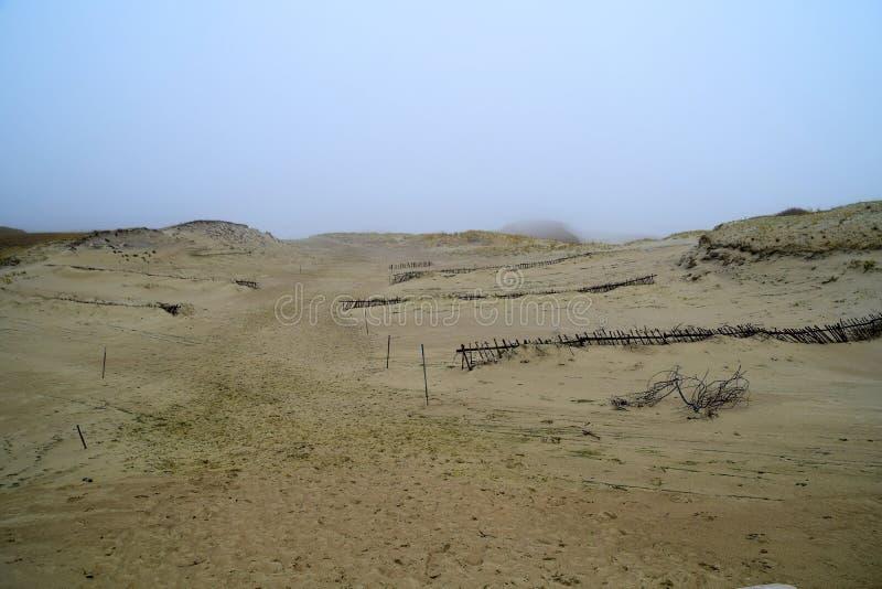 El canto curonio en la niebla fotografía de archivo libre de regalías