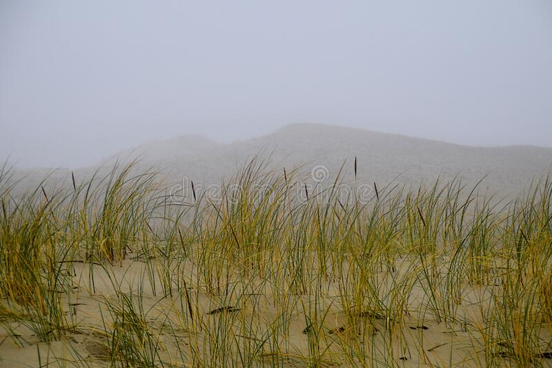 El canto curonio en la niebla foto de archivo libre de regalías