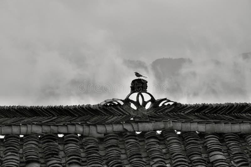 El canto decorativo de la casa china vieja con la pequeña localización del pájaro en ella fotografía de archivo libre de regalías