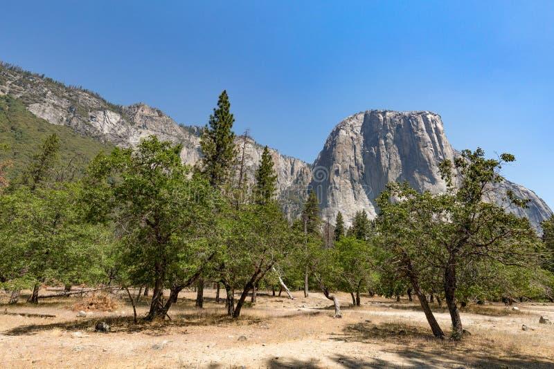 El Capitan在优胜美地国家公园,加利福尼亚 库存图片