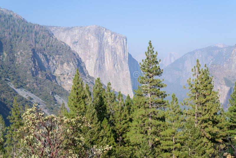 EL Capitan, ένας από τον πιό εικονικό σχηματισμό βράχου σε Yosemite στοκ εικόνα