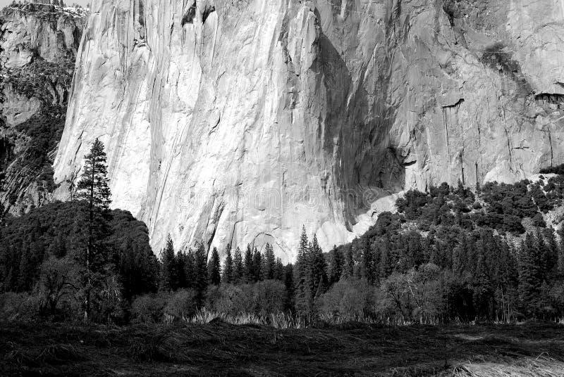 El Capitan. Base of El Capitan mountain in black and white stock photos