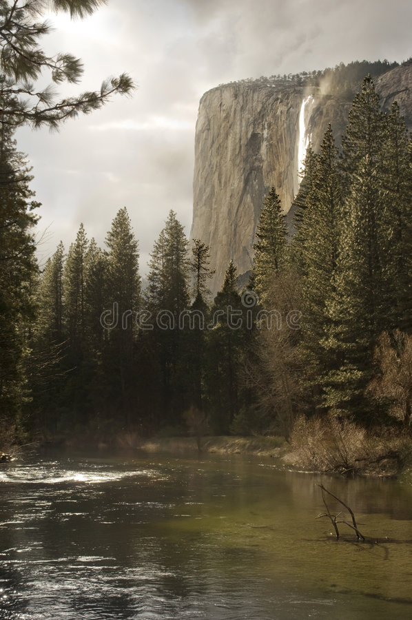 Download El Capitan stock image. Image of nature, stream, evergreen - 5123053