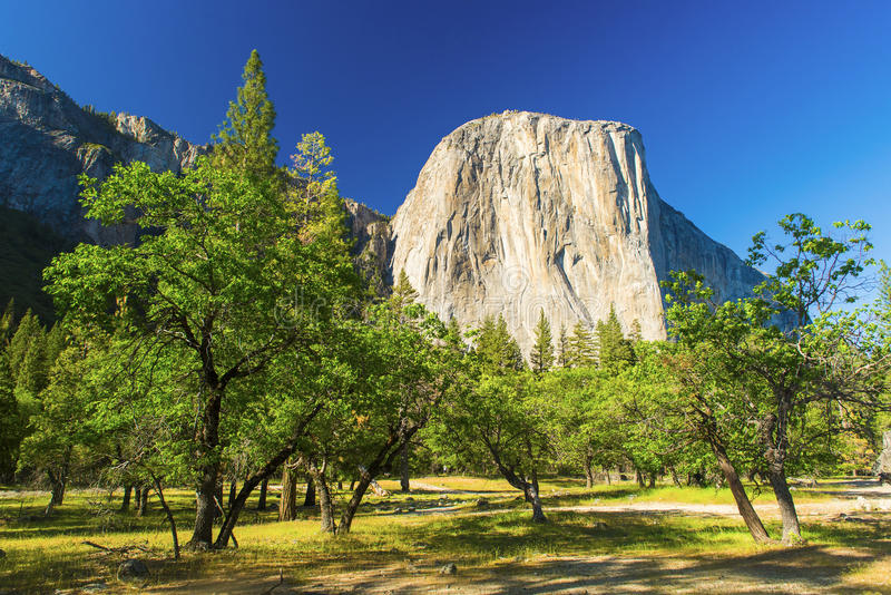 El Capitan. Granite rock seen from the Yosemite Valley, Yosemite National Park, USA royalty free stock images