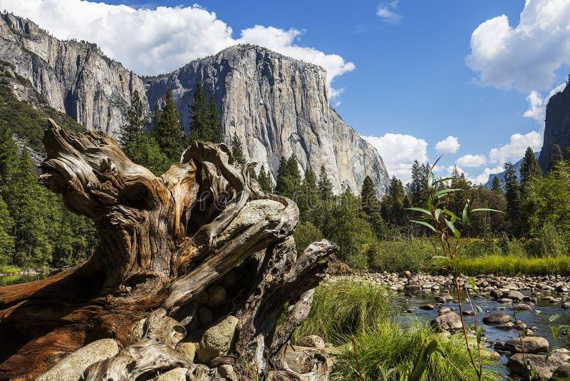 EL Capitan, parque nacional de Yosemite, Califórnia, EUA foto de stock