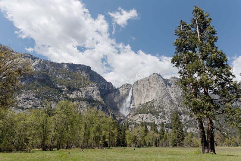El Capitan and waterfall in Yosemite stock photography