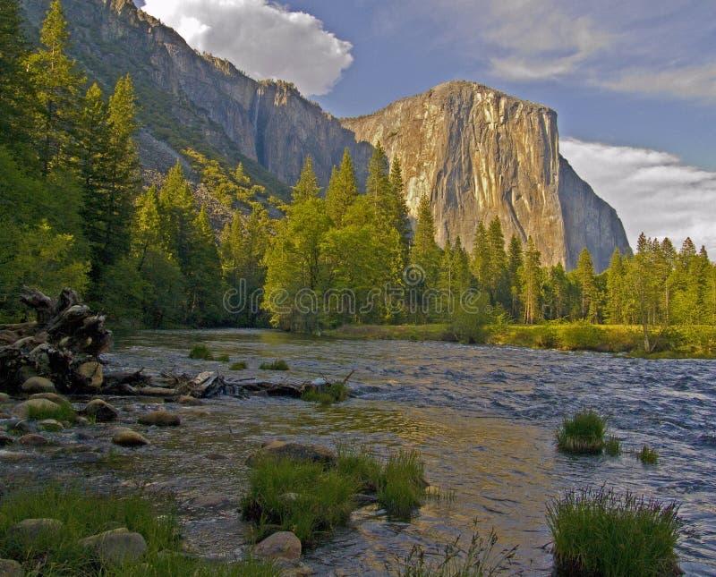 El Capitan, Yosemite royalty free stock images