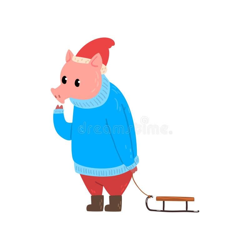 El carácter divertido lindo del cerdo se vistió en ropa brillante caliente que caminaba con el trineo, símbolo chino del Año Nuev stock de ilustración