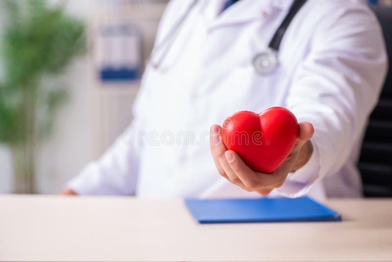 El cardi?logo de sexo masculino del doctor que lleva a cabo el modelo del coraz?n imágenes de archivo libres de regalías