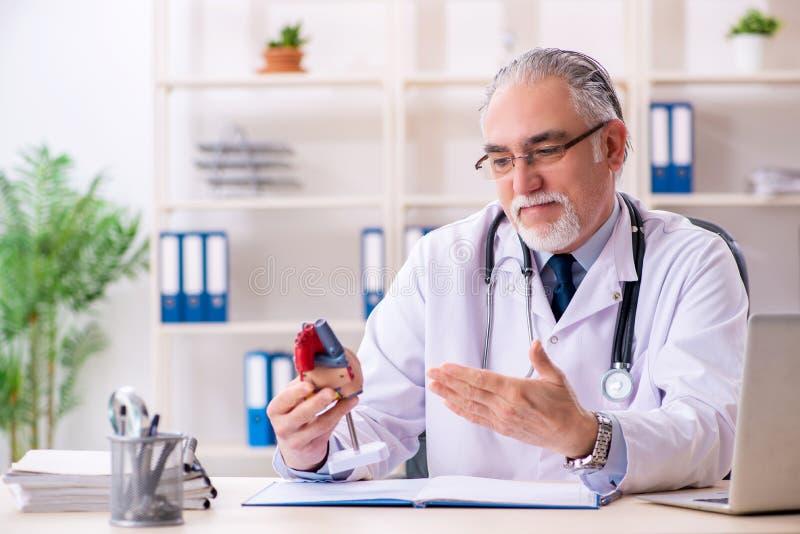 El cardi?logo de sexo masculino envejecido del doctor con el modelo del coraz?n foto de archivo