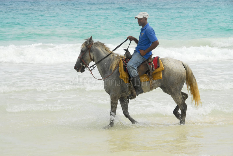 El Caribe del caballero imágenes de archivo libres de regalías