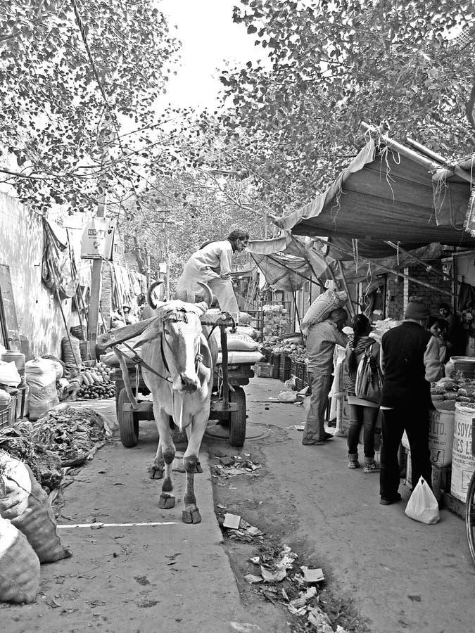 El carro de Bullock del indio descarga en el mercado fotografía de archivo libre de regalías