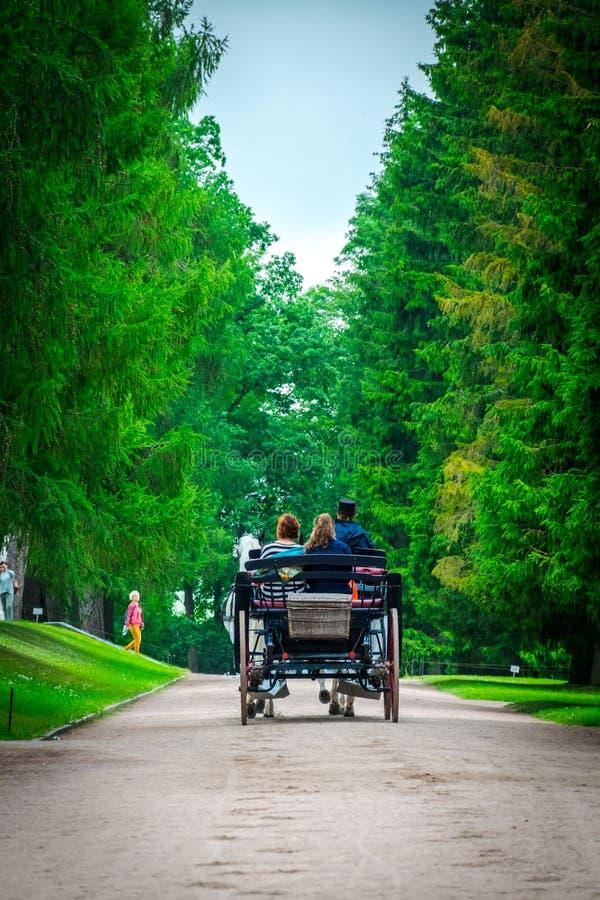 El carro del caballo pasar a través de parque en Catherine Palace en St Petersburg, Rusia fotos de archivo libres de regalías