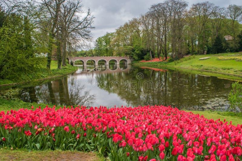 El castillo de Groot-Bijgaarden - jardines imagen de archivo libre de regalías
