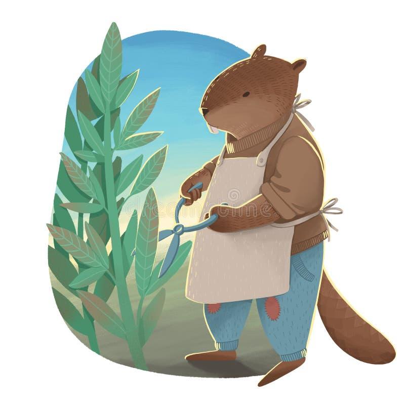 El castor como humano en los vaqueros, el suéter y el delantal sosteniendo las tijeras y las hojas de la poda stock de ilustración