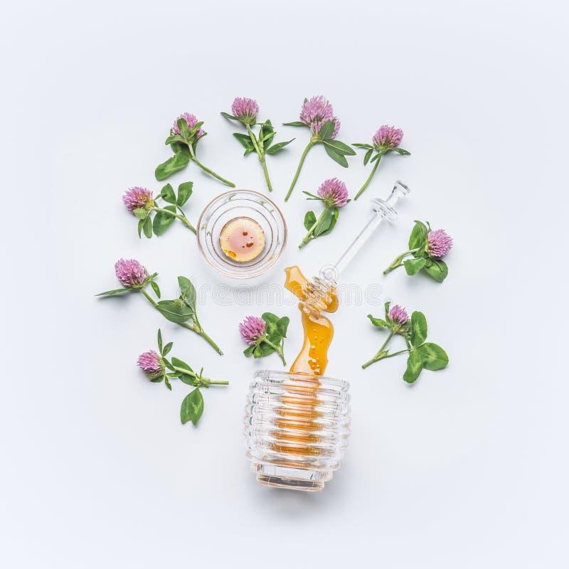 El cazo de la miel con la miel mancha del tarro con las flores salvajes del trébol en el fondo blanco imagenes de archivo