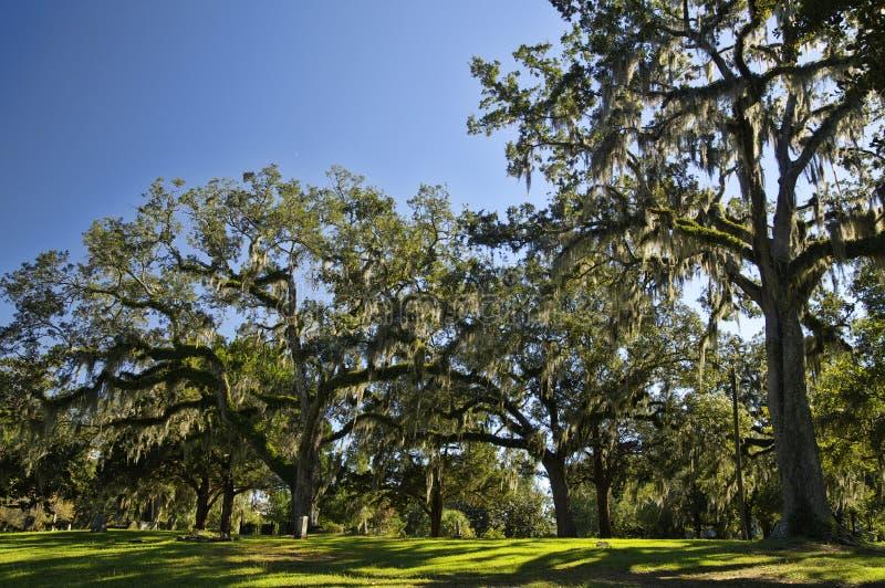 El cementerio viejo de la ciudad de Tallahassee es el más viejo cementerio de la ciudad, Tallagasse fotografía de archivo