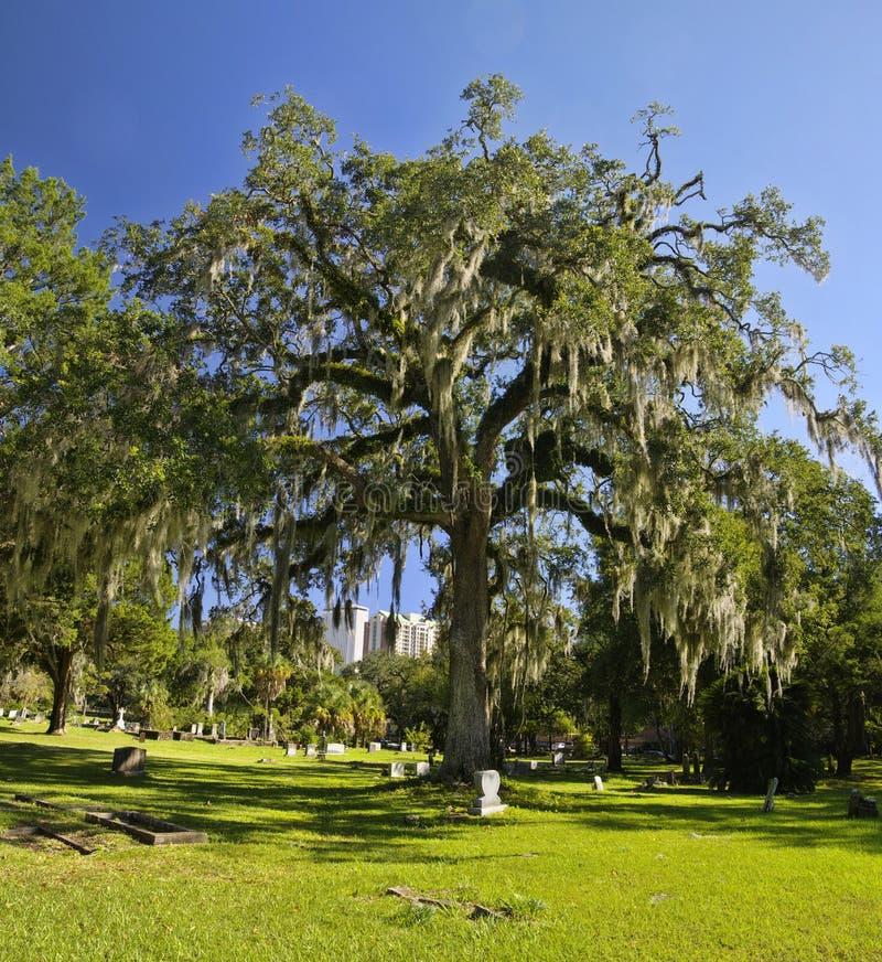 El cementerio viejo de la ciudad de Tallahassee es el más viejo cementerio de la ciudad, Tallagasse imagenes de archivo