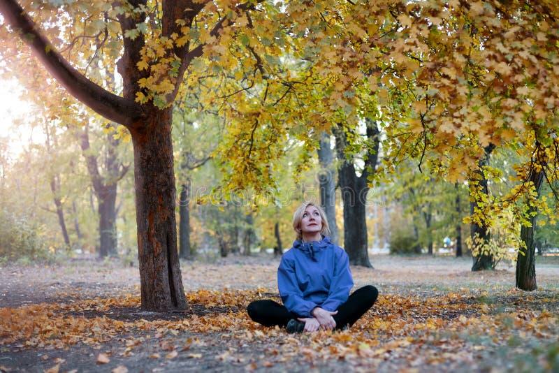 El centro envejeció a la mujer caucásica se sienta solamente debajo del árbol grande en el parque del otoño Ropa de sport brillan fotos de archivo