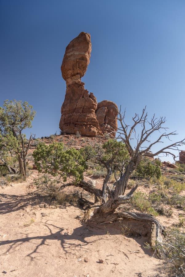 El cepillo equilibrado de la roca y del desierto, arquea el parque nacional Moab Utah imágenes de archivo libres de regalías