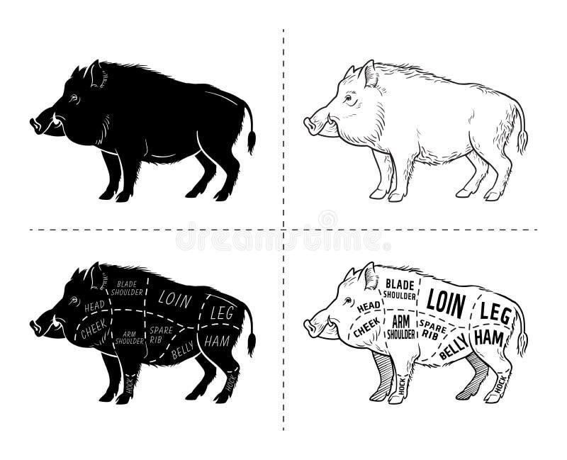 El cerdo salvaje, carne de caza del verraco cortó el esquema del diagrama - sistema de elementos en la pizarra stock de ilustración