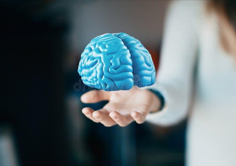 El cerebro humano a mano, piensa, tumor, ideas fotografía de archivo